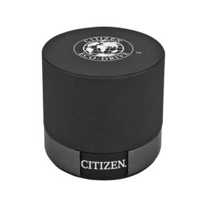 Citizen EM0093-59A Ciena Women's Watch