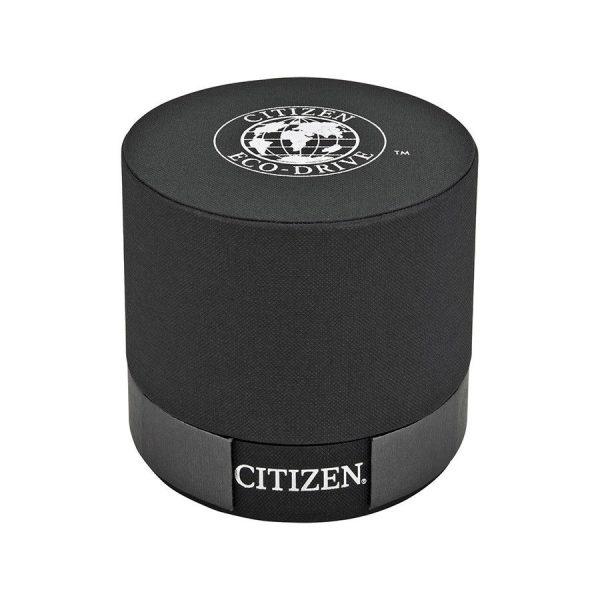 Citizen EW1594-55d Paladion Women's Watch